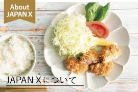japan x,JAPAN X,ジャパンエックス,JAPANXについて
