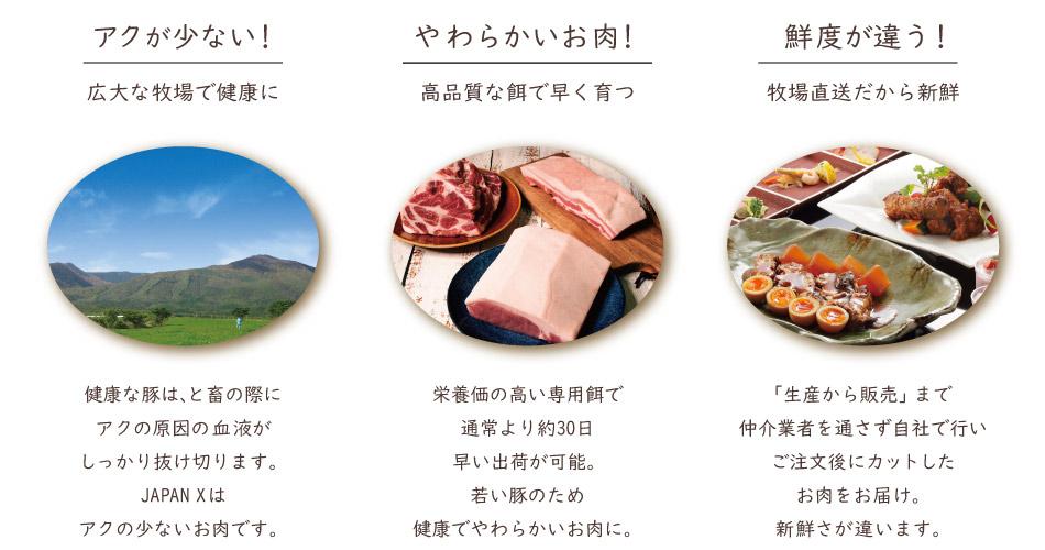 JAPAN X,お試しセット,精肉・加工肉セット,アクが少ない,健康な豚,鮮度が違う,