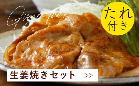 JAPAN X,ジャパンエックス,生姜焼きセット,しょうが焼きセット,たれ付き