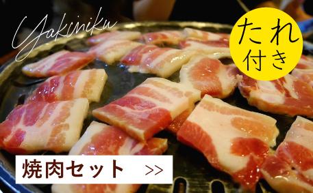 JAPAN X,ジャパンエックス,焼き肉セット,焼肉セット,たれ付き