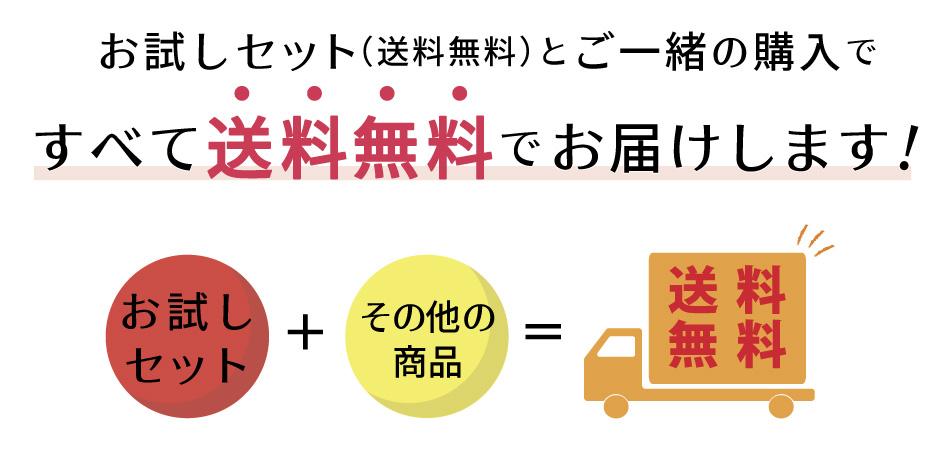 JAPAN X,ジャパンエックス,お試しセット,焼き肉お試しセット,その他の商品と一緒に注文するとすべて送料無料でお送りします